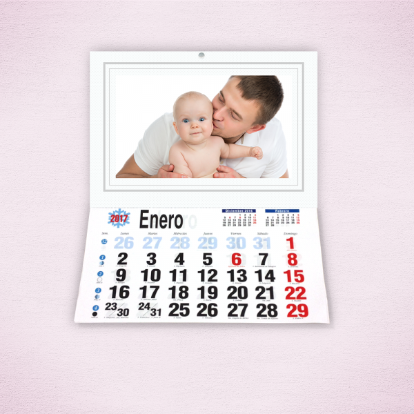 Pack 4 calendarios faldilla