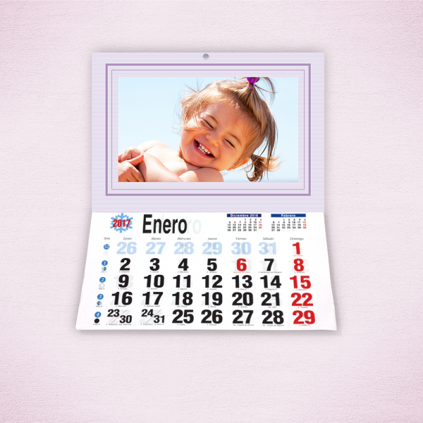 Pack 6 calendarios faldilla