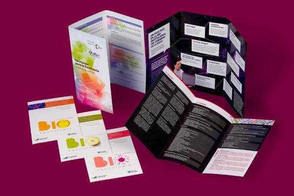 flyer y folletos